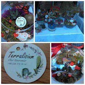 terralisium canlı çiçek